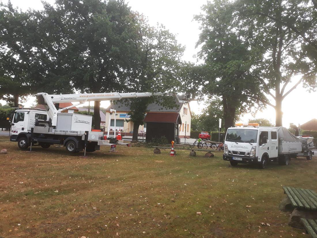 Baumpflege-Team Spreewald